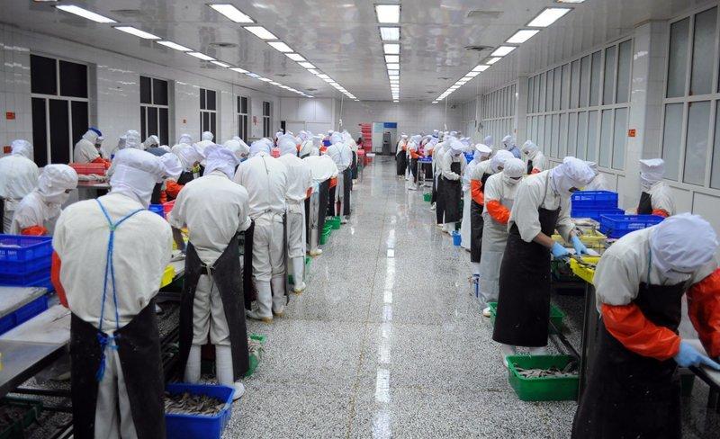 Китайцам запрещают много работать: что из этого выйдет? ynews, забота о народе, китай, новости, отпуск, работа