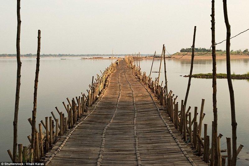 Для конструкции требуется около 50 тысяч бамбуковых палок! бамбук, в мире, камбоджа, конструкции, мосты, неожиданно, постройка, путешествия