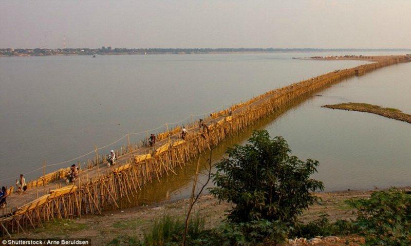 Шедевральный 300-метровый бамбуковый мост в Камбодже каждый год разбирают и строят заново бамбук, в мире, камбоджа, конструкции, мосты, неожиданно, постройка, путешествия