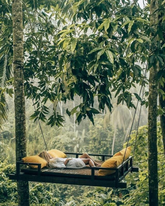 Отдых в тропиках день, животные, кадр, люди, мир, снимок, фото, фотоподборка