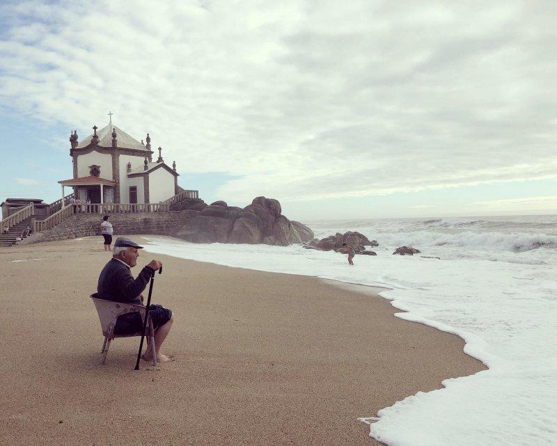 Португалия день, животные, кадр, люди, мир, снимок, фото, фотоподборка