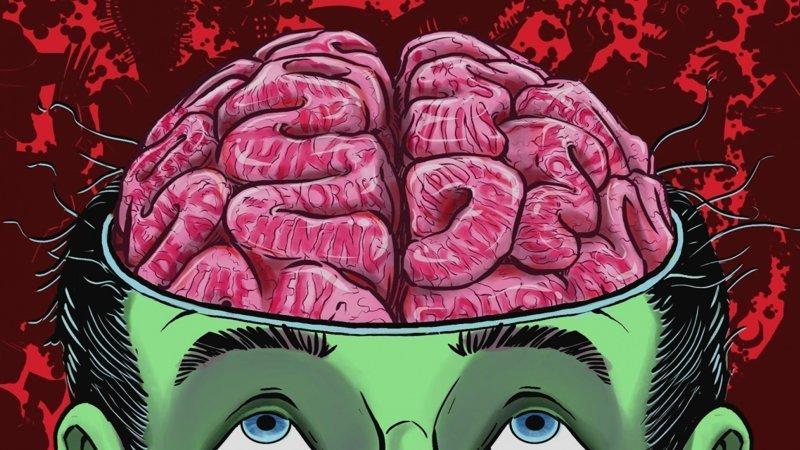 Как понять свой мозг и подружиться с ним истории, мозг, наука, тренировка мозга