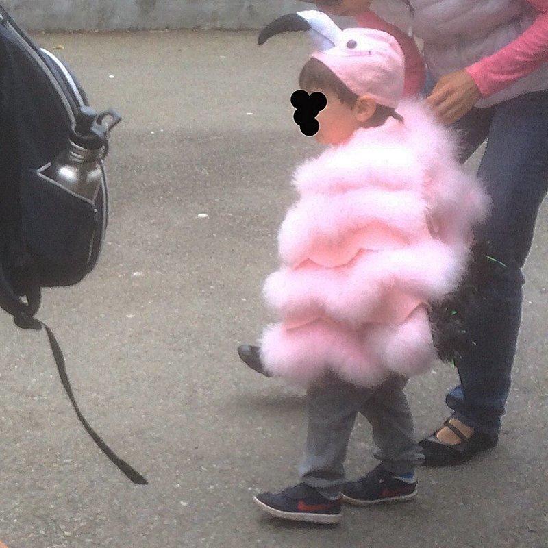 10. Мальчик пришел в зоопарк Сан-Франциско в костюме фламинго животные и люди, зоопарк, поход в зоопарк, смешно, сходил я как-то раз в зоопарк, фото