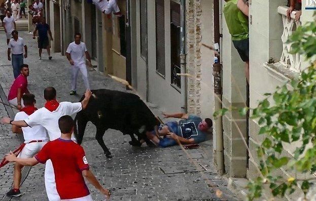 Зритель попал на рога во время забега быков Наварра, Фестиваль, Эстелла, бык против человека, забег быков, испания, коррида, чрезвычайное происшествие