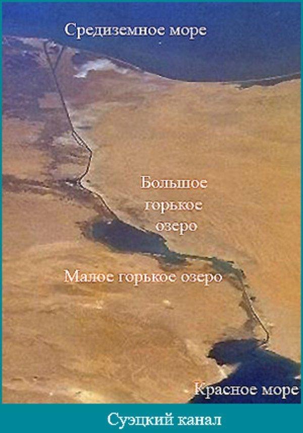Чуть-чуть истории и немного о морских обитателях реки под названием Суэцкий канал история, суэцкий канал, фауна