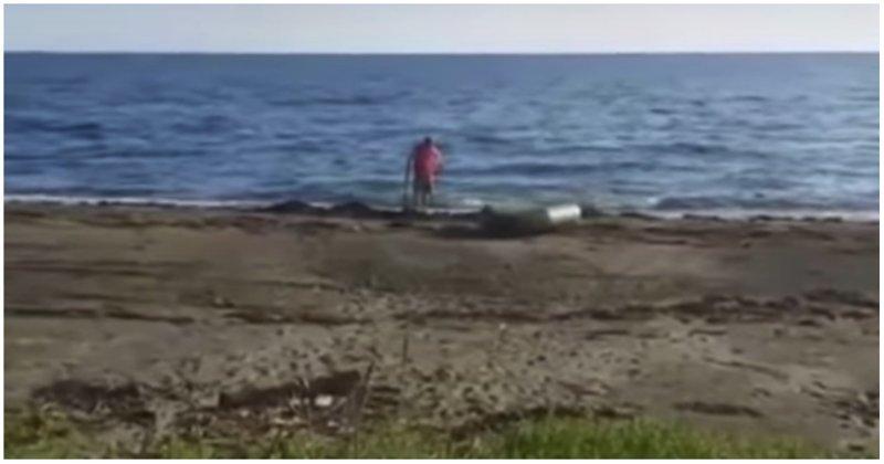 Драма и трагедия: мужики потеряли бутылку водки на пляже в Приморье видео, водка, неудача, пляж, поиски, прикол, пропажа, юмор