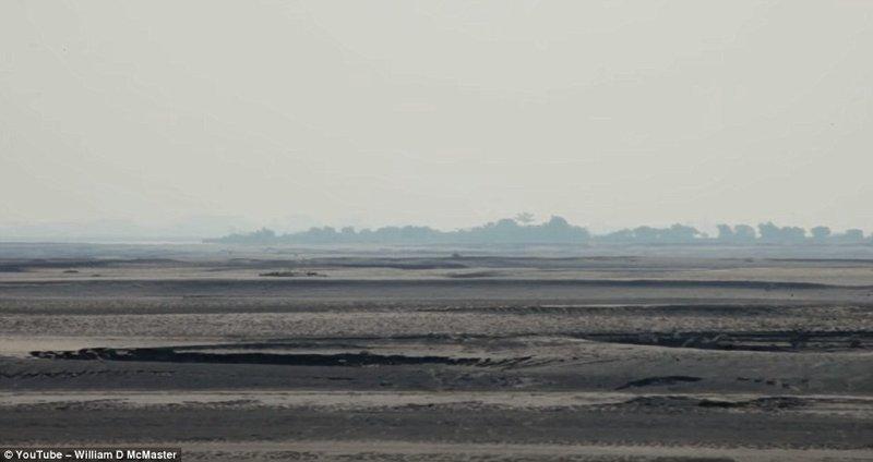 Обычный ландшафт острова Маджули выглядит примерно так заповедник, индия, история жизни, круто!, лес, настоящий человек, один в поле воин, цель жизни