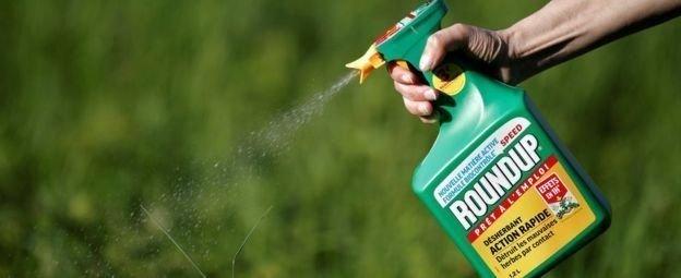 Monsanto обязали выплатить $290 млн заболевшему садовнику выплатить, монсанто, обязали, садовник
