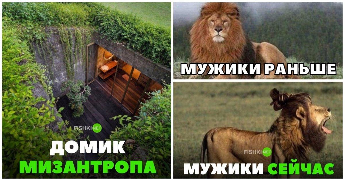 можно нельзя картинки лев с надписью мужики тогда и сейчач дороге