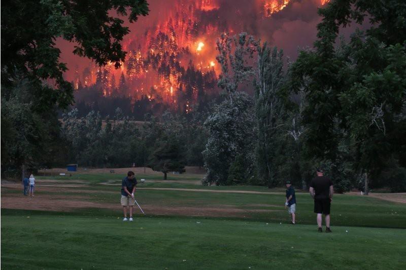 51. Лесные пожары в Орегоне животные, мир, подборка, природа, ужас, фото, явление