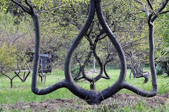Утраченное мастерство...Необычные деревья Акселя Эрландсона Непознанное