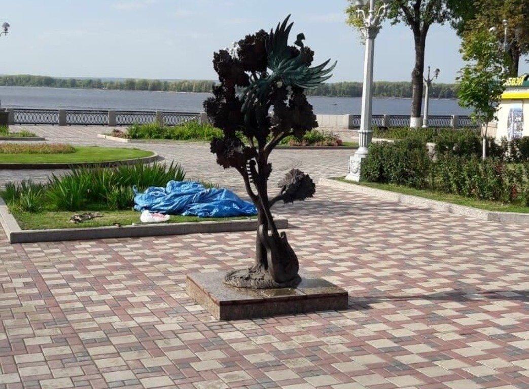 Скульптуру « Клён», посвящённую знаменитой песне ВИА « Синяя птица», открыли в Самаре