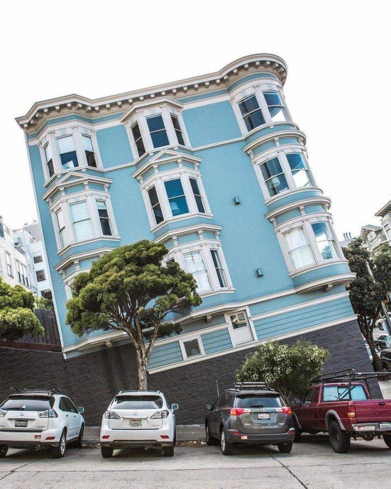 Улица Сан-Франциско день, животные, кадр, люди, мир, снимок, фото, фотоподборка