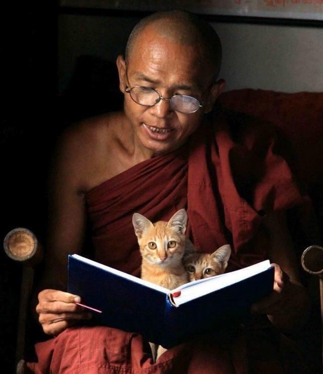 Смешные картинки о медитации