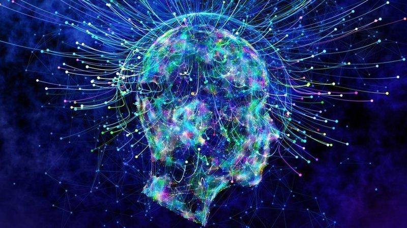 5. От дежавю мозг помогает нам избавиться с помощью «системы перепроверки фактов» Дежавю, мозг, наука, память, психология