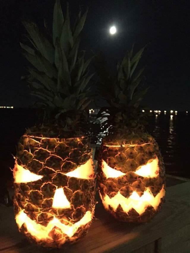 Хэллоуин на Гавайях день, животные, кадр, люди, мир, снимок, фото, фотоподборка