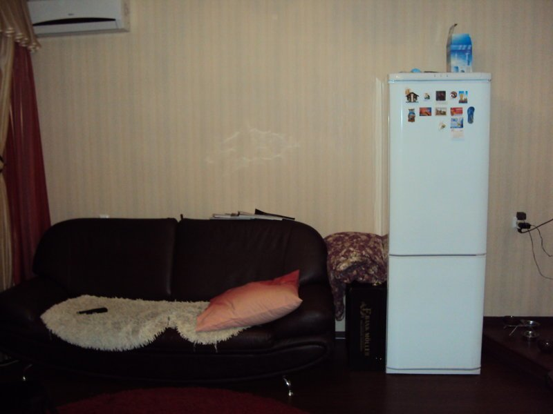 аэрография на холодильнике аэрография, роспись, своими рука, художественная