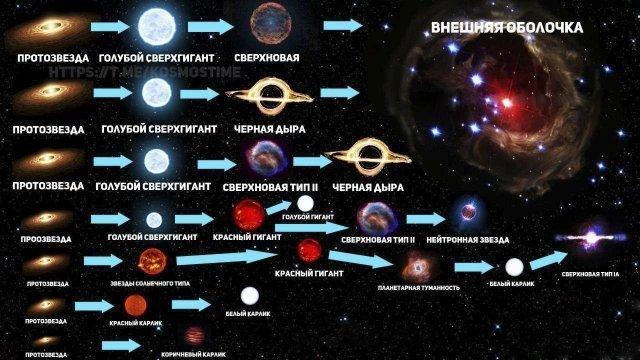 В зависимости от массы протозвезды образуются разные типы звезд, и у каждого типа свой эволюционный путь график, информация, факты