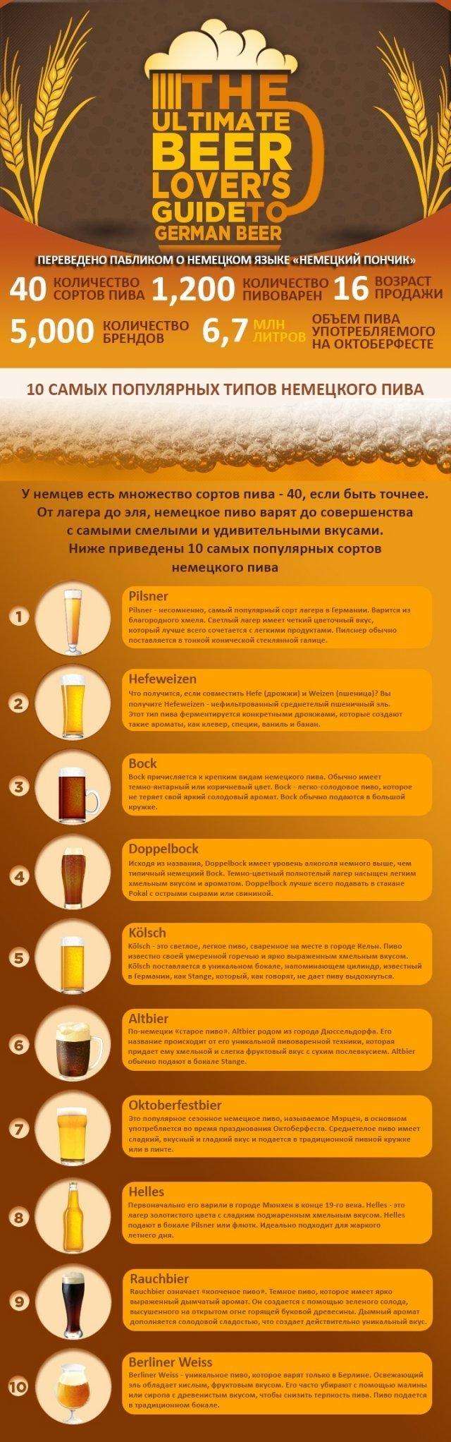 10 самых популярных сортов немецкого пива график, информация, факты