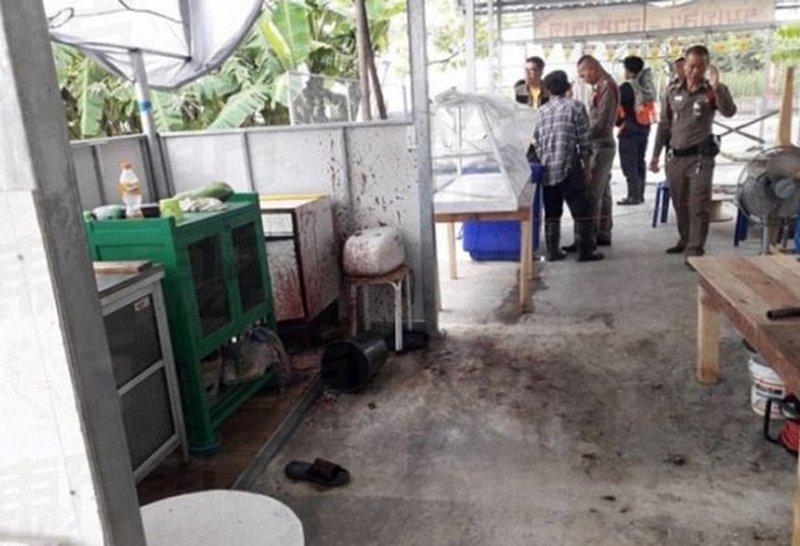 В Бангкоке в ресторане веганов кормили человеческим мясом vegan, в мире, еда, люди, мясо, пища, ресторан