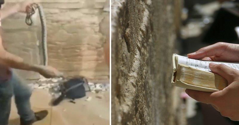 На Стене Плача появился третий предвестник конца света ynews, апокалипсис, вера, змея, новости, стена плача