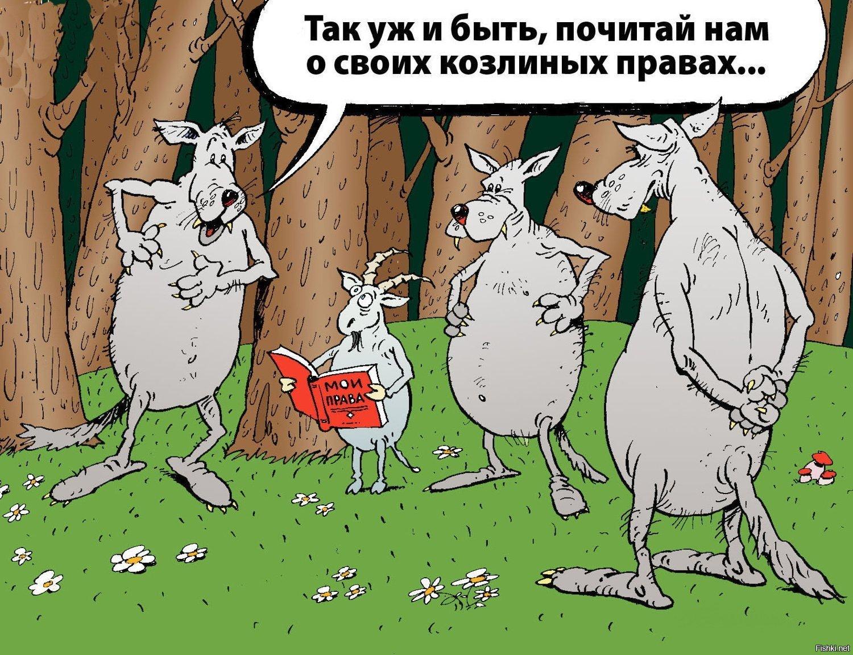 """Рада ухвалила законопроект про розмитнення """"євроблях"""" - Цензор.НЕТ 5513"""