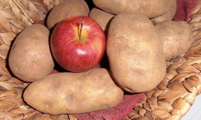 5. Положите яблоко к картофелю, и оно не даст ему прорастать и сморщиваться гениально, еда, идея, полезно, совет, хитрости