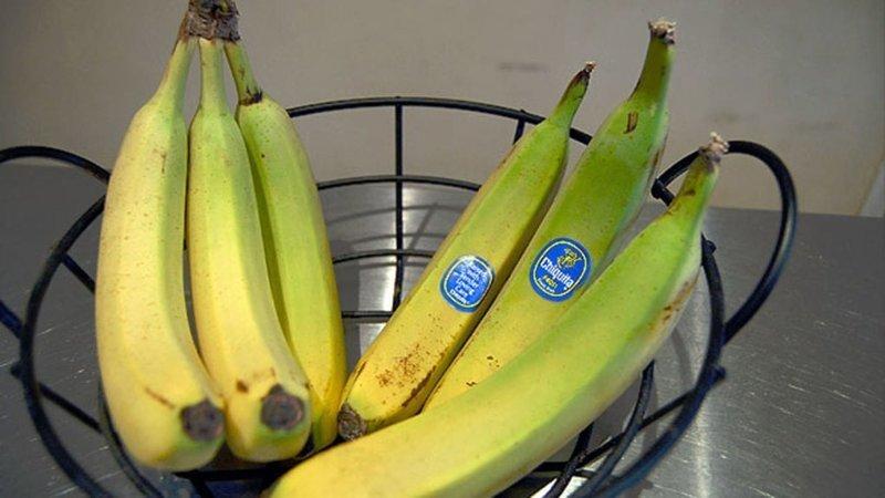 3. Хотите, чтобы бананы дольше не портились? Храните их раздельно, не сваливая в кучу гениально, еда, идея, полезно, совет, хитрости