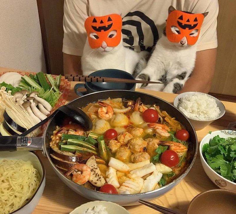 Прикольные картинки с ужином