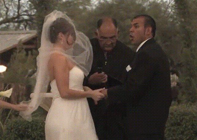Свадьба гифка смешная, днем