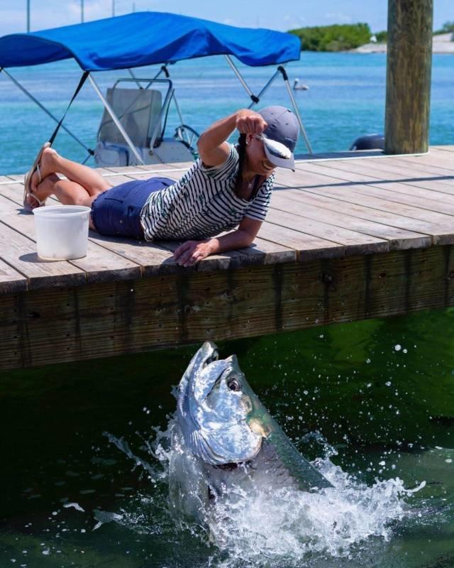 Вот это рыбка день, животные, кадр, люди, мир, снимок, фото, фотоподборка