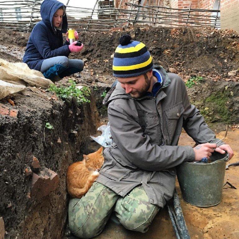 В раскопках даже поучаствовал котик :-)  ynews, археология, кости, мамонт, находка, секрет, сюрприз