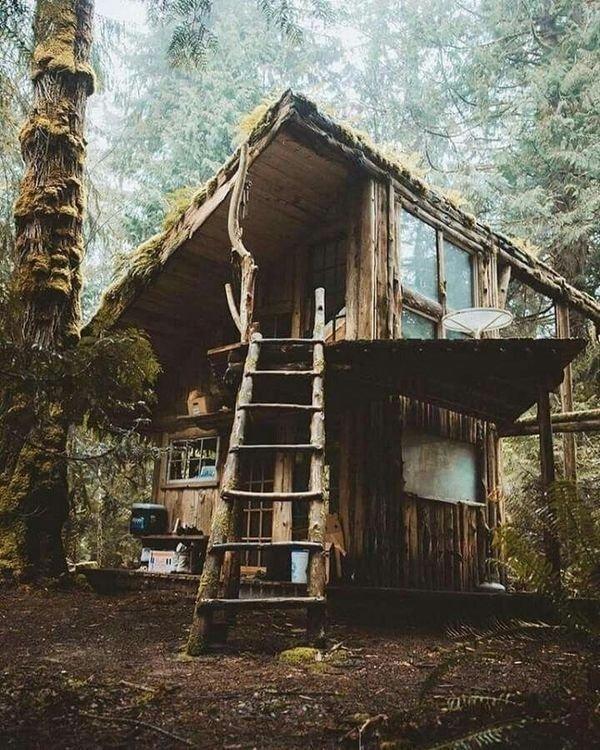своими руками обычный дом в лесу фото внутри данный момент