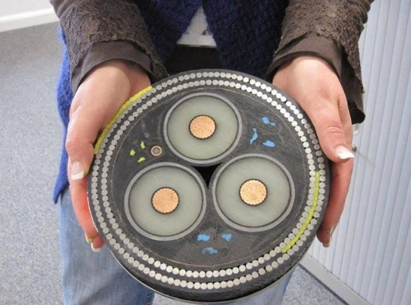 10. Подводный кабель в разрезе, вещи в разрезе, интересно, пополам, фото