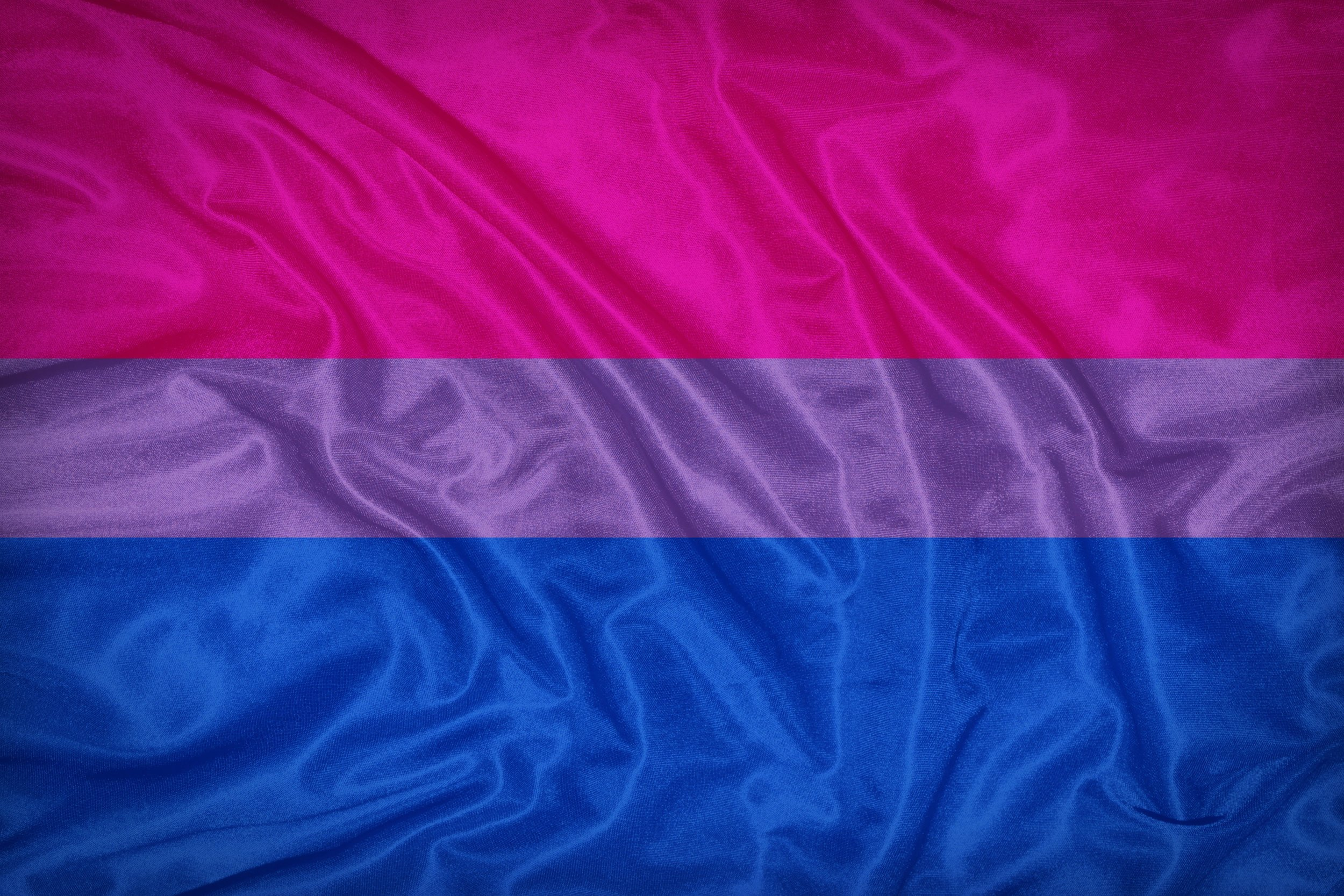 Celebrating the bi flag