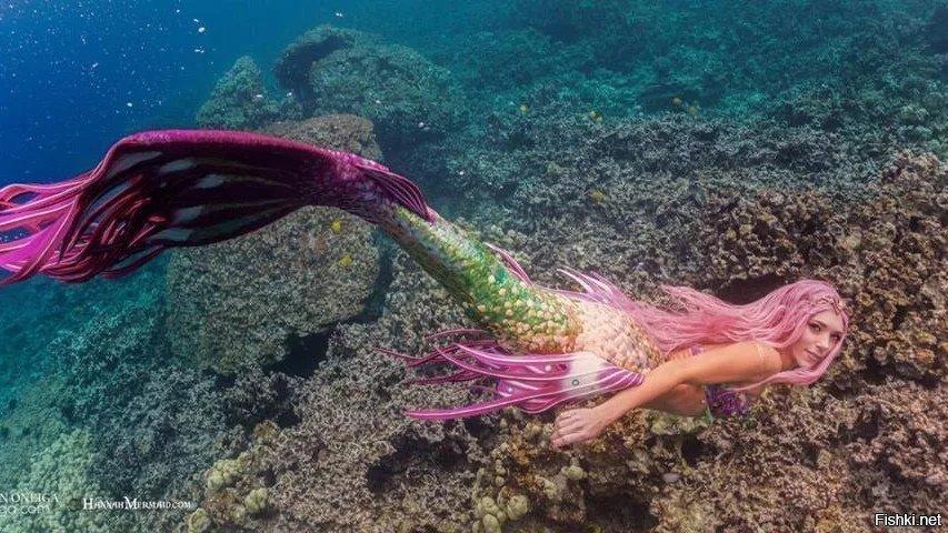 скажу, фото русалок в реальной жизни своеобразная невероятно