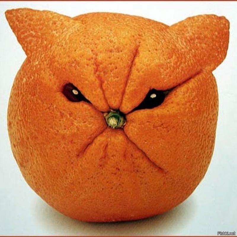 Прикольная картинка мандарина, днем рождения салют