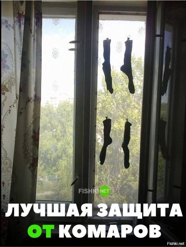 Прикольные картинки от комаров, правда открытки картинки