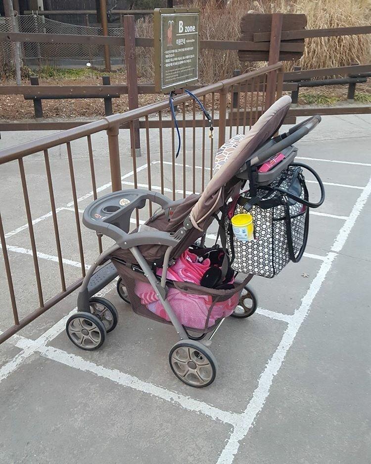 Парковки для колясок Их нравы, забота о гражданах, особенности, традиции, туалет, южная корея