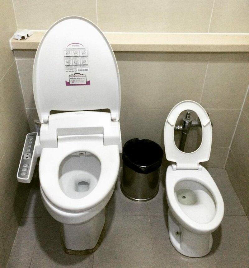 Семейные туалеты Их нравы, забота о гражданах, особенности, традиции, туалет, южная корея
