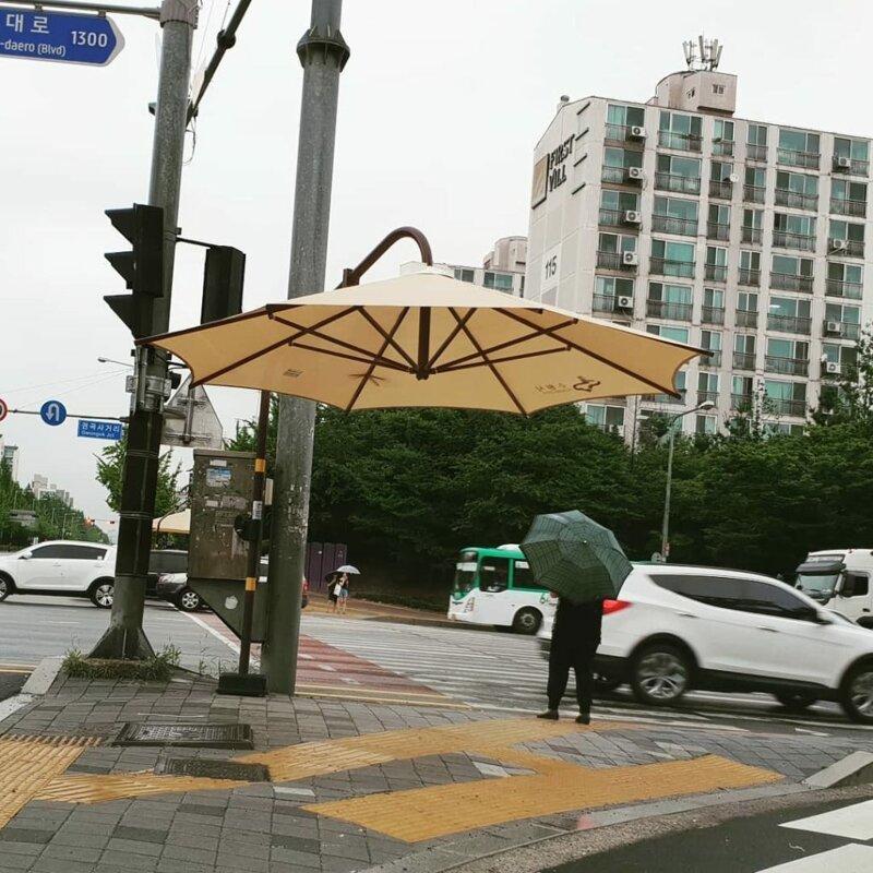 Зонты на пешеходных переходах Их нравы, забота о гражданах, особенности, традиции, туалет, южная корея