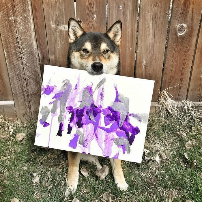 Главное — поймать вдохновение! домашний питомец, животные, картина, рисунок, художник