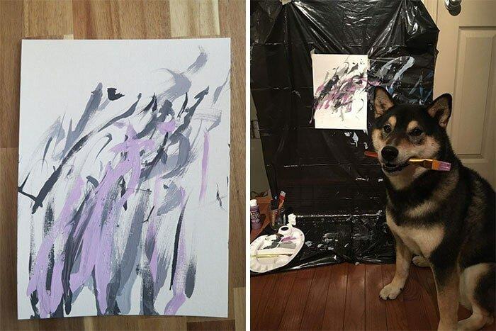 Собака рисует картины, которые пользуются большой популярностью! домашний питомец, животные, картина, рисунок, художник
