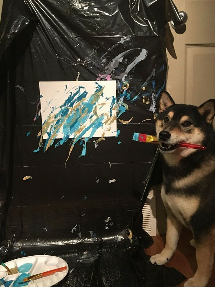 Пёс получает лакомства за прилежное рисование домашний питомец, животные, картина, рисунок, художник
