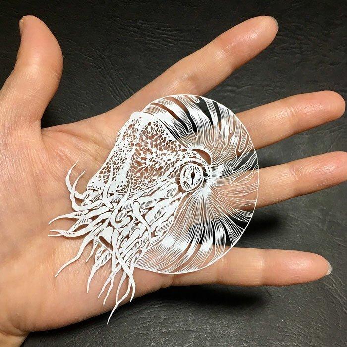 Тонкое японское искусство – осьминог, вырезанный из одного листа бумаги искусство, красота, осьминог, очумелые ручки, своими руками, талант