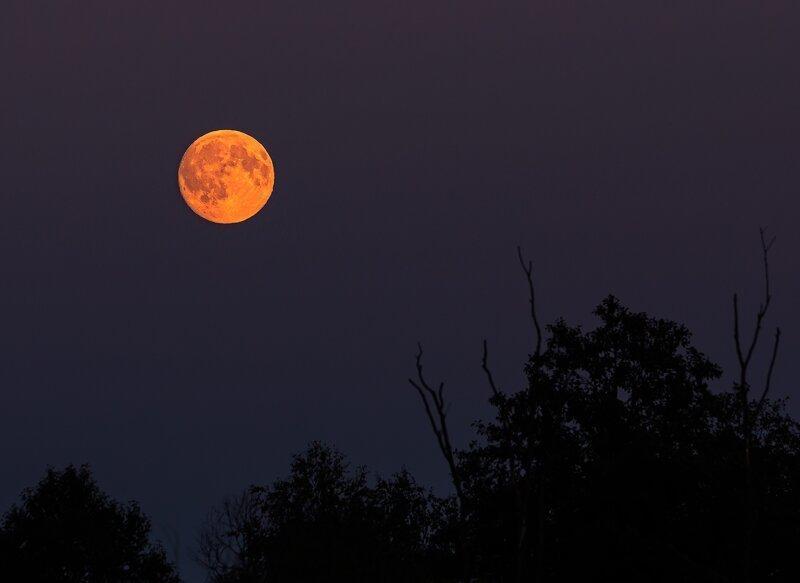 кровавая луна фотографии вам дорог ваш