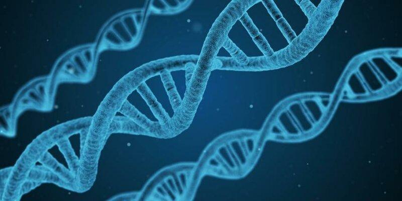 Ученые: У похожей на Солнце протозвезды обнаружен ключевой компонент развития ДНК и РНК