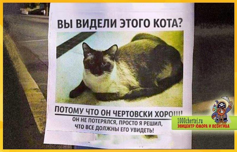 25 объявлений из России, вызывающих недоумение и восторг одновременно