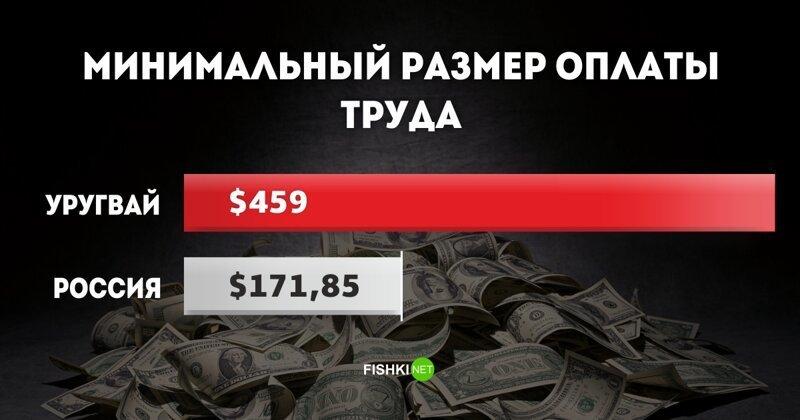 МРОТ в Уругвае: $459 МРОТ, доход, минимальный размер оплаты труда, оклад, сравнения, экономика
