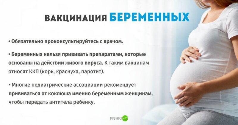 Вакцинация беременных Вакцинация, болезни, вакцины, медицина, полезное, прививки, профилактика
